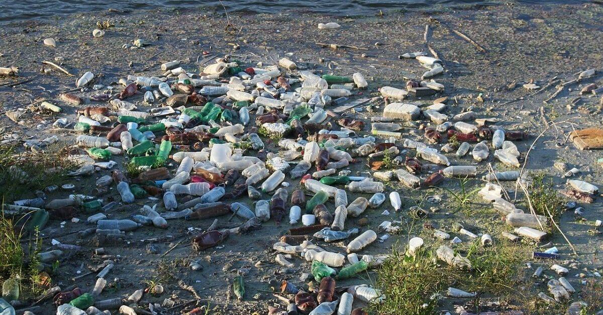 Ô nhiễm môi trường nước là gì? Thực trạng đáng báo động về ô nhiễm môi trường nước hiện nay